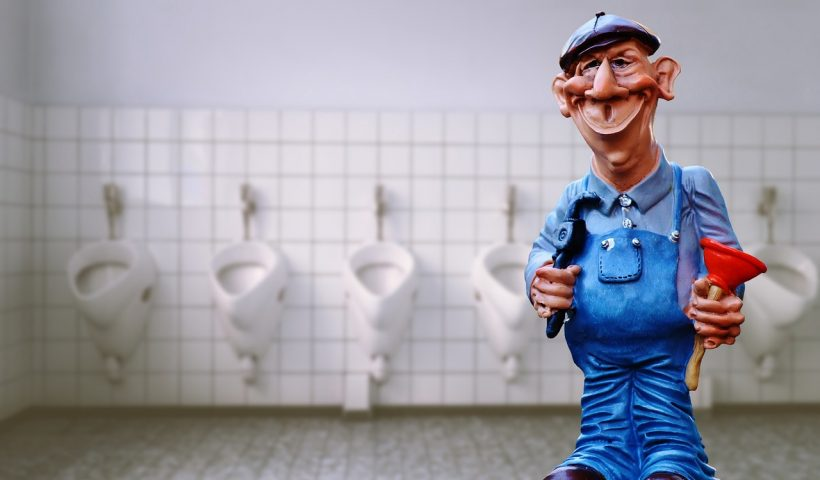 wc verstopt stappenplan