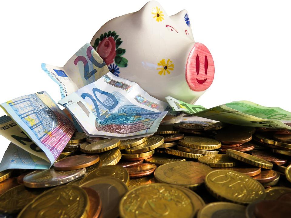 geld besparen ongedierte